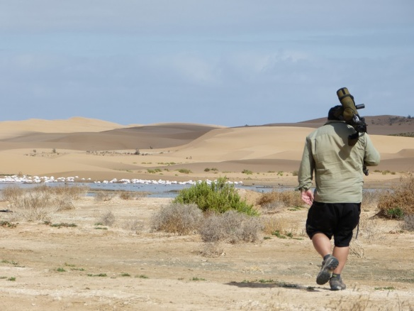 Birdwatching, rutas de fauna y flora