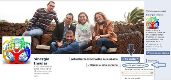 página fans Sinergia Insular Lanzarote