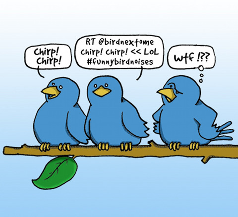 Twitter birds in real life