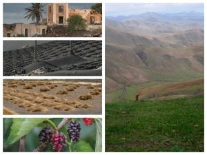 Recursos para un turismo de naturaleza en Lanzarote